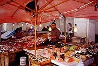 Trapani - Caratteristico mercato del pesce  - Trapani (56990 clic)