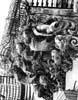 Balcone di Palazzo Villadorata - Noto (SR)  - Noto (7357 clic)