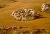 Terrritorio agricolo di Caltanissetta  - Caltanissetta (3873 clic)