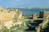 Isola di Mozia (TP) - strada di ingresso della porta nord  - Mozia (11839 clic)