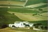 Azienda agricola del trapanese  - Trapani (2184 clic)