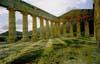 Segesta - Il tempio  - Segesta (9973 clic)