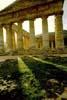 Segesta - Il tempio  - Segesta (2327 clic)