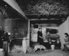 La preparazione della ricotta nelle masserie negli iblei  - Modica (3848 clic)