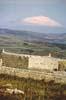 Iblei (RG) - Contrada Castiglione  - Iblei (3061 clic)