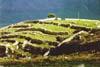 Iblei (RG) - altipiano degli Iblei  - Iblei (3886 clic)