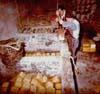La preparazione del caciocavallo ragusano  - Modica (4028 clic)