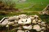 Iblei (RG) - Paesaggio rurale  - Iblei (3275 clic)