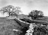 Iblei (RG) - Tipica masseria dell'altipiano ibleo  - Iblei (2828 clic)