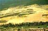 Territorio a Maniace di Bronte - (CT)  - Bronte (4310 clic)