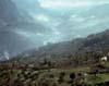 Nebrodi - Valle del rosmarino - (ME)  - Nebrodi (3953 clic)