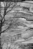 Tipica fiumara dei Nebrodi - (ME)  - Nebrodi (3710 clic)