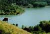 Lago di Ancipa - territorio di Enna  - Enna (7197 clic)