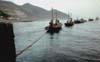 Isole Egadi - la tonnara di Favignana - La Mattanza  - Favignana (2885 clic)