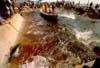 Isole Egadi - la tonnara di Favignana - La Mattanza  - Favignana (3484 clic)