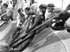 Isole Egadi - la tonnara di Favignana - La Mattanza  - Favignana (2776 clic)
