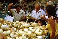 Sagra della Cipolla  - Giarratana (24381 clic)