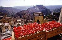 Pomodori secchi. Sullo sfondo Ragusa Ibla  - Ragusa (14969 clic)
