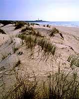 Spiaggia di Sampieri  - Sampieri (5049 clic)