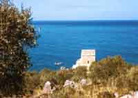 Torre a Castel di Tusa - 1955  - Tusa (6658 clic)