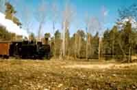 Il trenino di Piazza Armerina -  1957  - Piazza armerina (3817 clic)