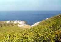 Pantelleria - Gadir - 1970  - Pantelleria (2156 clic)