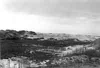 Dune - Donnalucata/Sampieri - 1958  - Donnalucata (2305 clic)