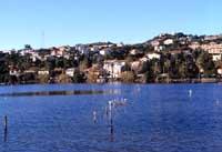 Pantani di Ganzirri - lago grande  - Ganzirri (7592 clic)
