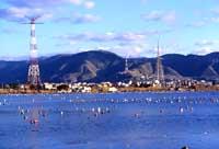 Pantani di Ganzirri - lago piccolo  - Ganzirri (14341 clic)