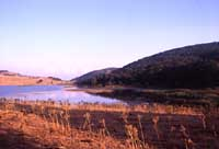 Monti Nebrodi - lago biviere  - Nebrodi (4952 clic)