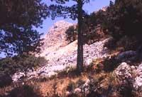 Monti Nebrodi  - Nebrodi (3374 clic)