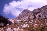Monti Nebrodi  - Nebrodi (3111 clic)