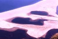 Oliveri (ME): Laghetti di acqua salmastra di Marinello visti dalla piazza antistante il Santuario della Madonna Nera del Tindari. Oasi ecologica  - Tindari (7975 clic)