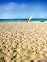 Spiaggia  - San vito lo capo (12385 clic)