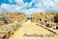 Porta Sud  - Selinunte (4894 clic)