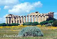 Tempio E  - Selinunte (3699 clic)