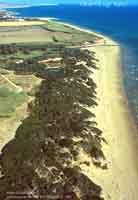 Macchia Mediterranea alla Foce del fiume Irminio  - Irminio (7500 clic)