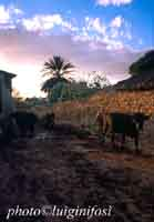 masseria al tramonto  - Scicli (3603 clic)