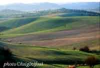 Paesaggio ibleo  - San giacomo (4419 clic)
