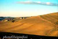 Paesaggio Siciliano  - San giacomo (3471 clic)