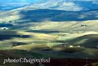 Paesaggio Agrigentino  - Belice (4627 clic)