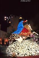 Festa della Madonna delle Milizie  - Scicli (2116 clic)