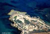 Punta Braccetto  - Punta braccetto (9355 clic)