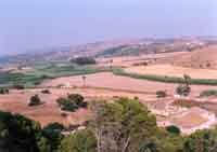Riserva del Pino d'Aleppo - vallata  - Ragusa (1930 clic)