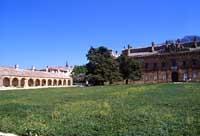 Bosco della Ficuzza - Palazzo Reale  - Ficuzza (7301 clic)