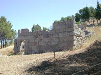 Tempio di Diana sulla Rocca  - Cefalù (7163 clic)
