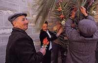Domenica delle Palme  - Gangi (6880 clic)
