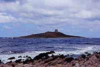 l'isolotto di Isola delle Femmine (l'Isola di fuori) vista dalla scogliera di Punta Barcarello  - Isola delle femmine (14010 clic)