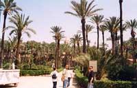 Parco antistante il Palazzo Reale (poi Palazzo dei Normanni) PALERMO Giambattista Scivoletto