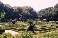 Parco D'Orleans  - Palermo (5889 clic)